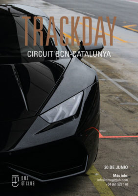 lamborghini Track Day Circuit cat